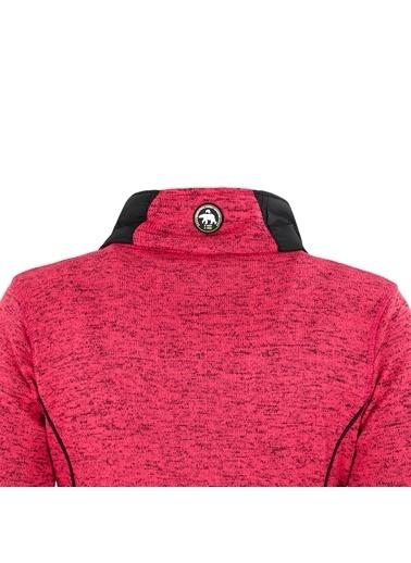 Norway Geographical Sweatshirt Pembe